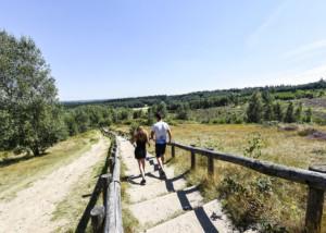 Nationaal Park Heuvelrug Landgoed Zonheuvel